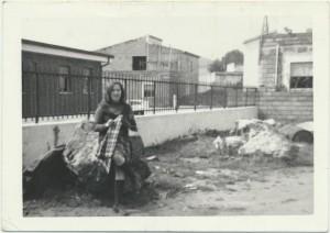 Marisa Amadori: archivio popolare fotografico